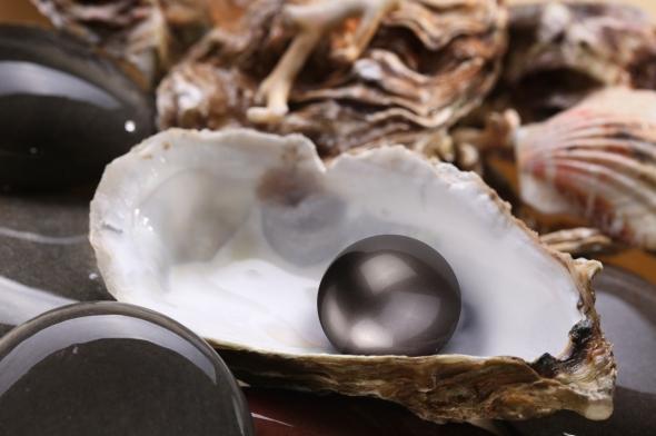 pearl-in-shell1.jpg