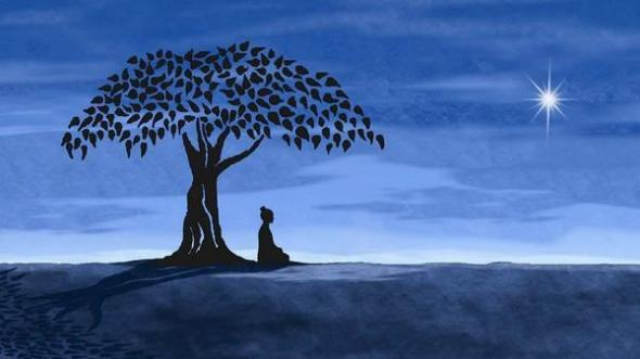 buddha under tree with moon